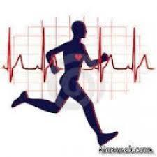 دانلود تحقیق آتونومی خودمختاری، هدفی مربوط به تخصصی شدن فیزیولوژی ورزش